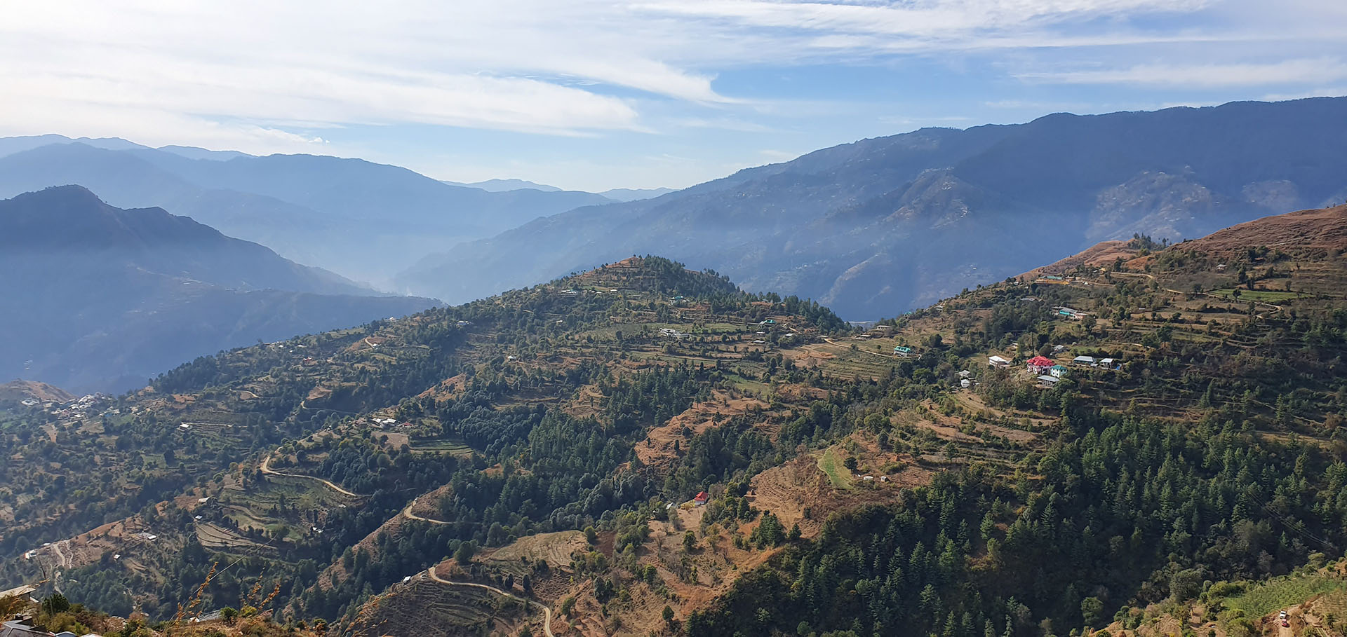Terraces with apple trees in remote India