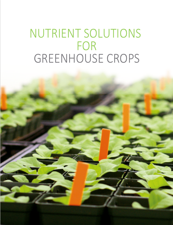 Nutrients solutions for greenhouse crops