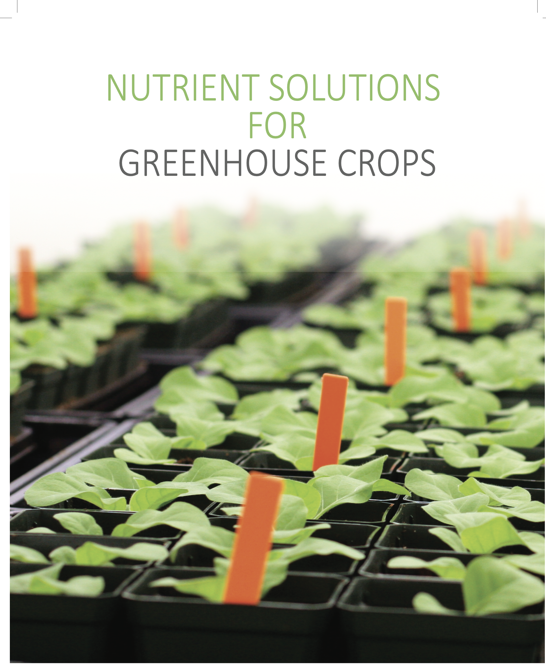 Nutrient Solutions for Greenhouse Crops