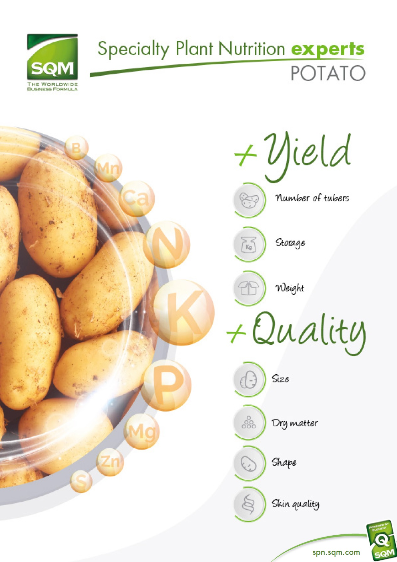 Specialty Plant Nutrition experts: Potato